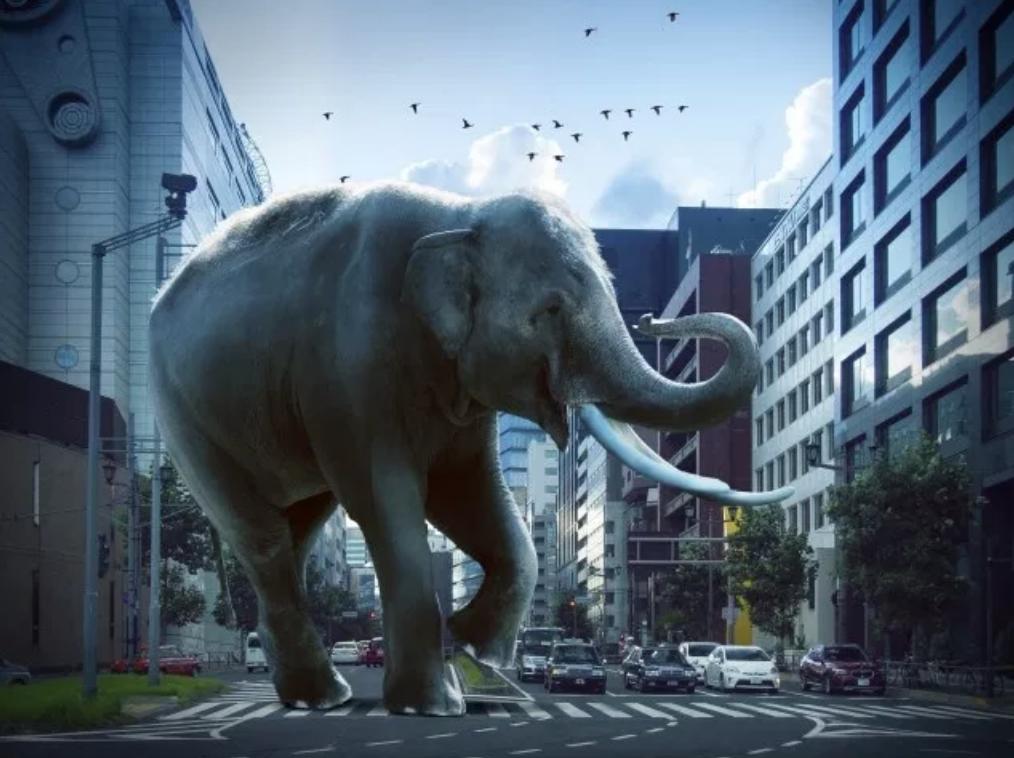 """むくみがひどい人向け""""象の足""""改善法と満員電車の楽しみ方、"""